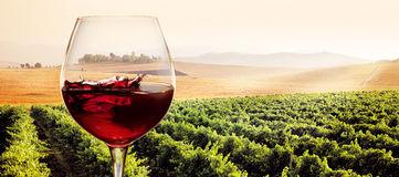 vidrio-de-vino-rojo-en-paisaje-soleado-del-viedo-59741172