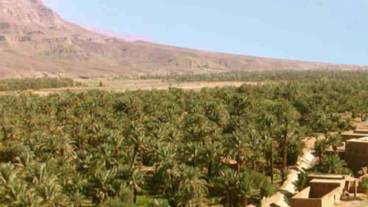 kasbah-oulad-othmane-photos-exterior-hotel-information