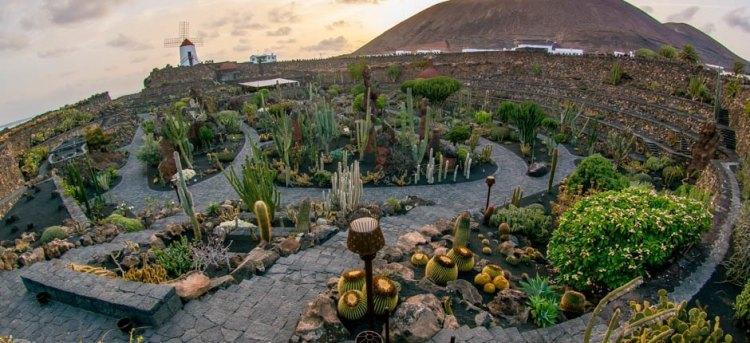 jardin_de_cactus-lanzarote_1