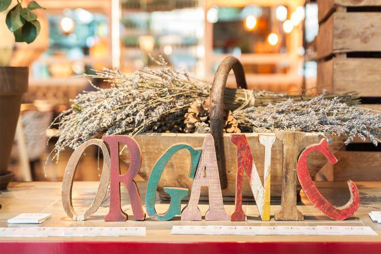 nest-organic-home-3