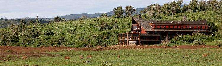 the-ark-lodge-kenya