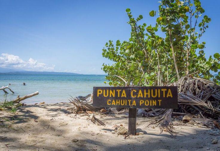 f42c872323c062fb349ccc1e1c7424d9-cahuita-costarica
