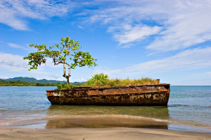 full-old-vessel-with-tree-in-puerto-viejo