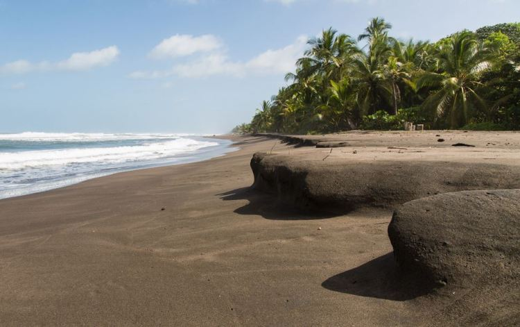 playa_tortuguero_costa_rica